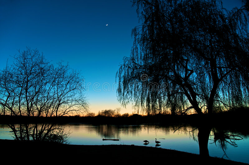 Download Cool Clear Evenings stock photo. Image of indigo, trees - 8780632