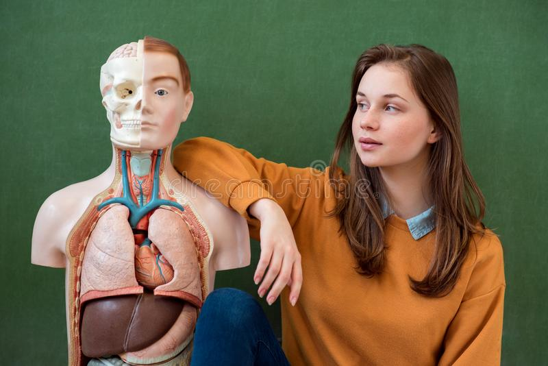 Cool female high school student portrait with an artificial human body model. Student having fun in Biology class. stock photography