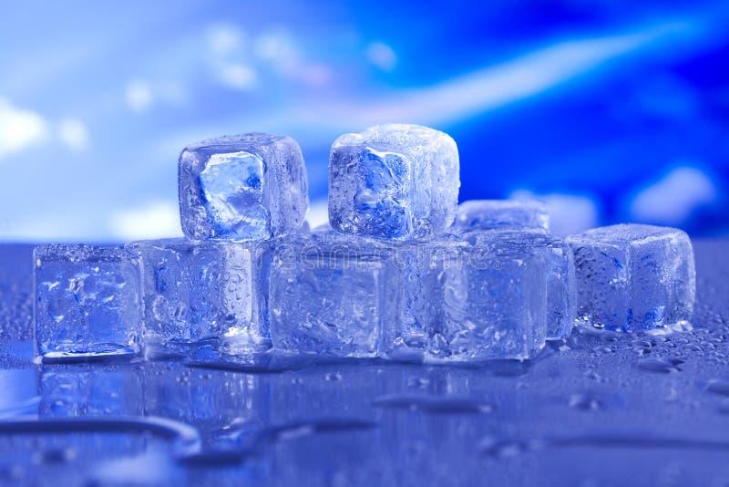 Cool i zamraża, zimny i świeży pojęcie, zdjęcia royalty free