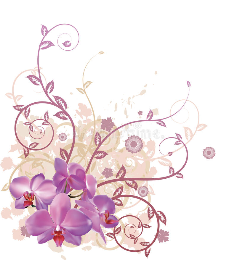 Download Cool Orchid Floral Background Stock Vector - Image: 19042438