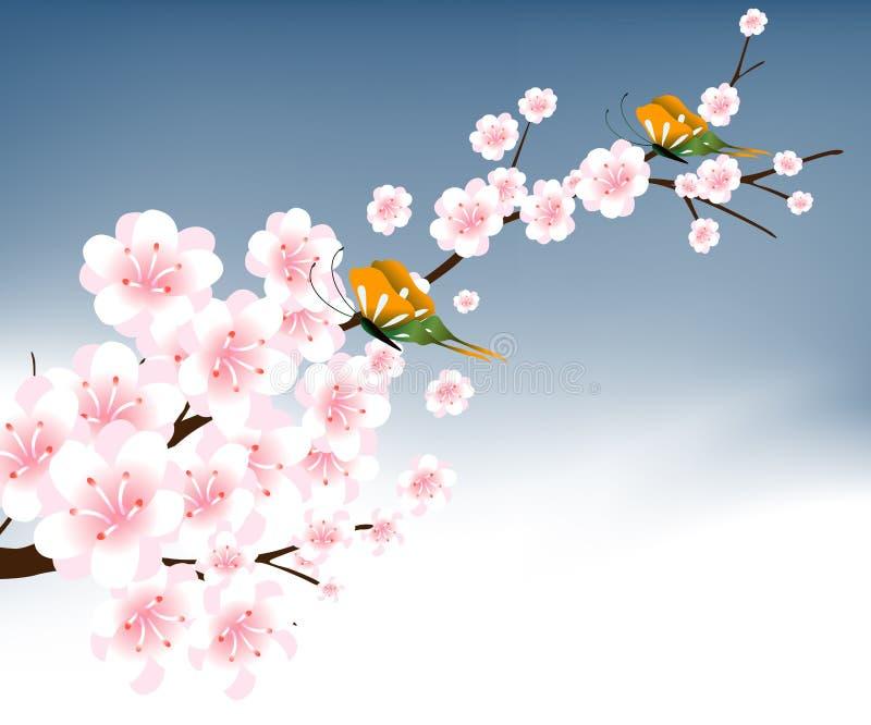 Cool Spring 02
