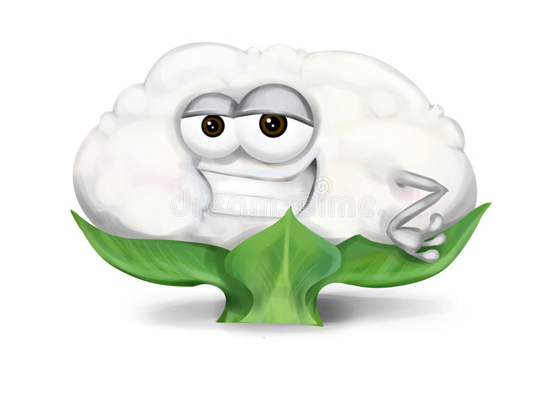 Cool white cauliflower cartoon character with half-open sly eyes, smiling. Single cute and funny cauliflower character with a big smile on a white background royalty free illustration