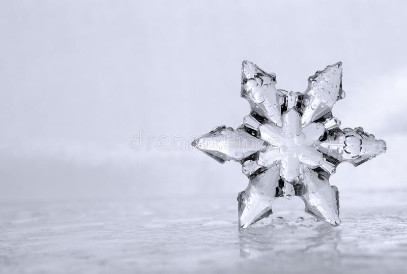 Cool Winter Snowflake with Left Side Copyspace. Close up photograph of a cool winter snowflake sitting on an icy, watery surface. Copyspace is provided to the royalty free stock image