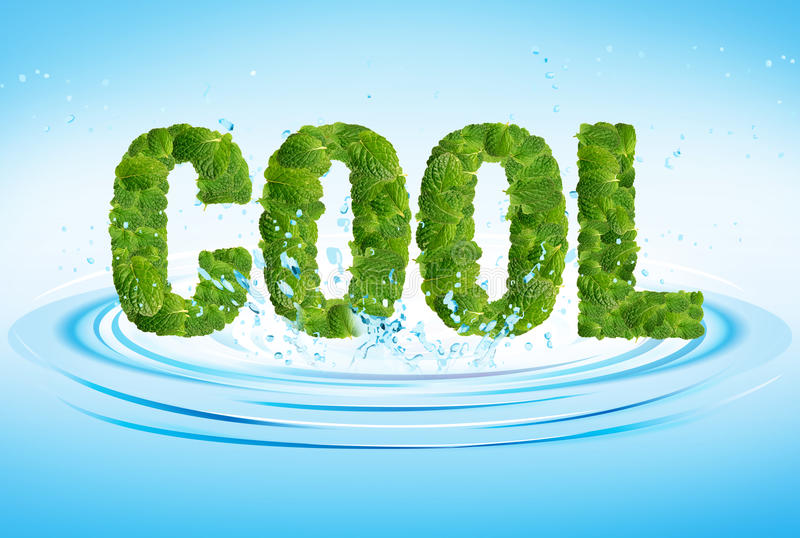 Cool Word Leaves Of Mint, Menthol, On Fresh Water Stock