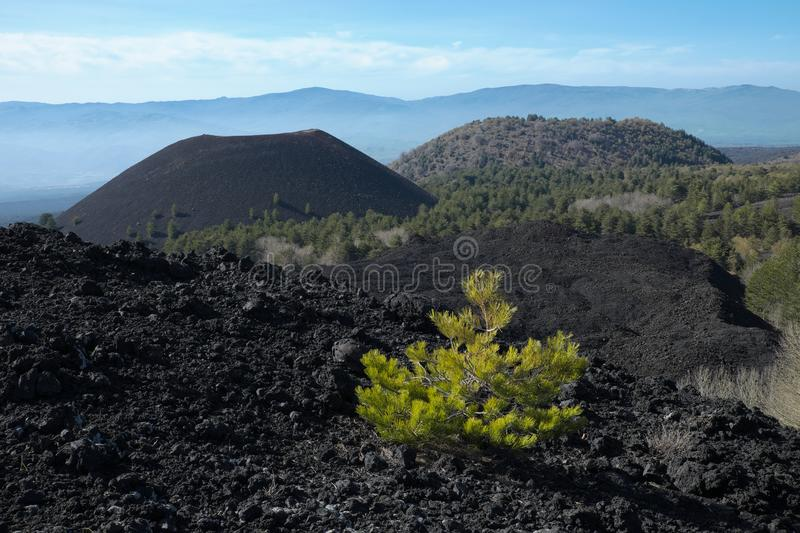 Cooled lava and volcanic cones in Etna Park, Sicily stock images