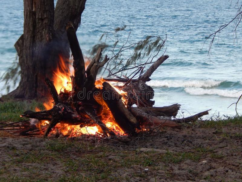 Coonar log fire royalty free stock photography