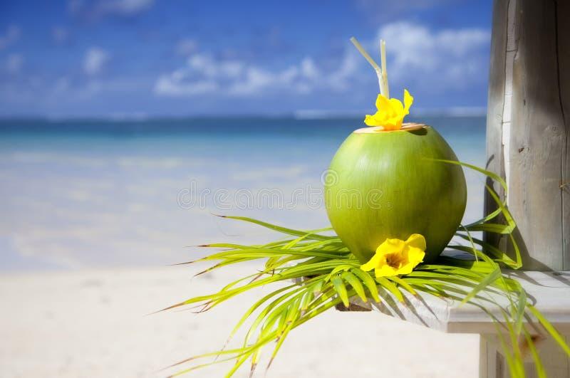 Beach of Mauritius stock photography