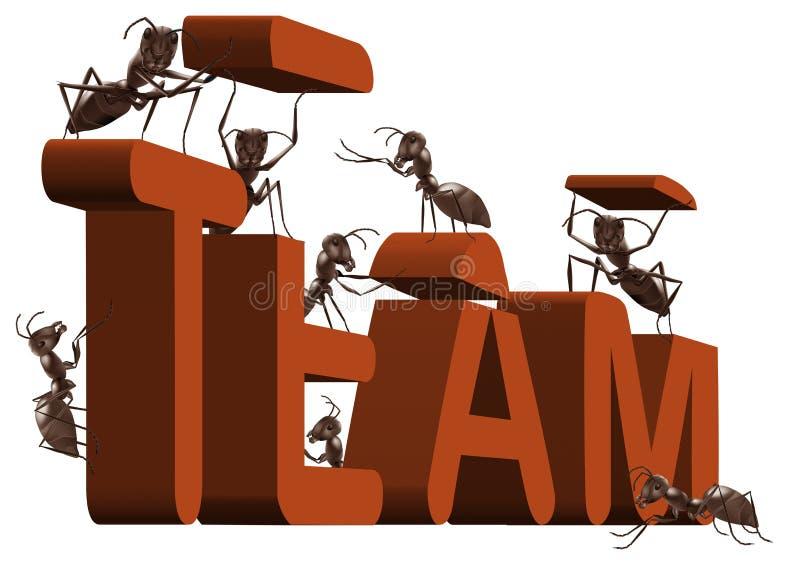 Coopération de construction ou de travail d'équipe de travail d'équipe de fourmi illustration stock