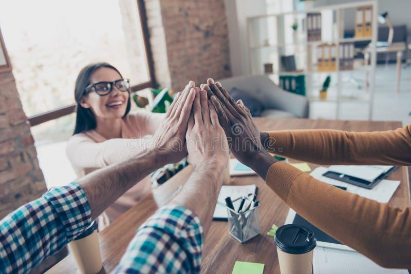 Cooperação multinacional dos colegas do líder do freelancer do treinamento imagem de stock