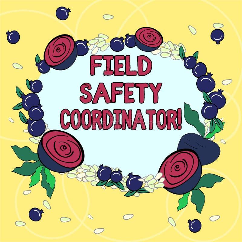 Coordenador da segurança do campo do texto da escrita O significado do conceito assegura-se de que a conformidade com a grinalda  ilustração stock