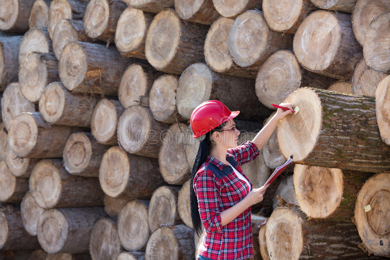 Coordenador fêmea da floresta ao lado dos logs fotos de stock royalty free