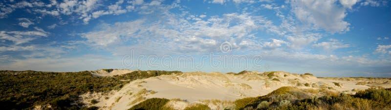 Coorong panoramisch stockfotos