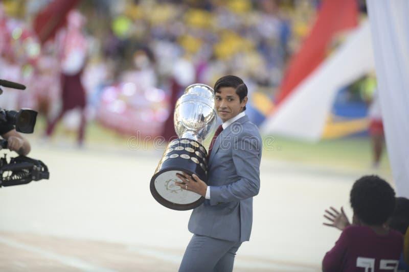 Copa Amerika Brasilien 2019 royaltyfri foto