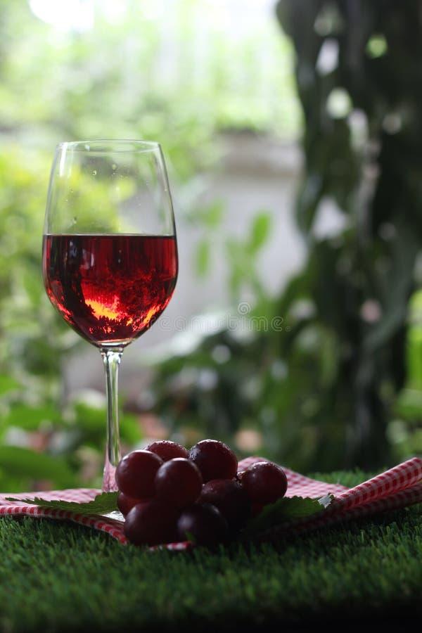 Copa de vino con la uva roja fotografía de archivo libre de regalías
