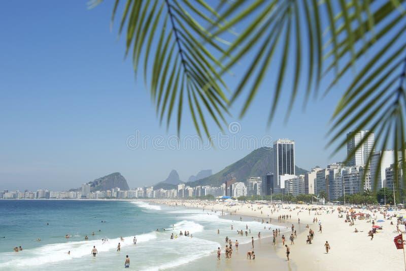 Copacabana Beach Rio de Janeiro Palm Fronds royalty free stock images
