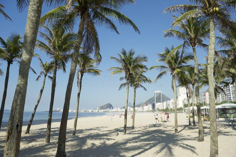 Copacabana strand Rio de Janeiro Palm Trees arkivbild