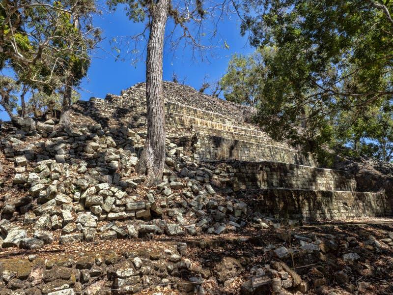Copan archeologiczny miejsce Majska cywilizacja nie daleko od granicy z Gwatemala, Ja był kapitałem magistrala klasyczna obraz stock