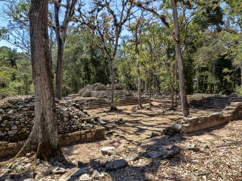 Copan archeologiczny miejsce Majska cywilizacja nie daleko od granicy z Gwatemala, Ja był kapitałem magistrala klasyczna obrazy royalty free