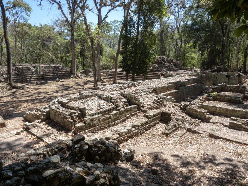 Copan archeologiczny miejsce Majska cywilizacja nie daleko od granicy z Gwatemala, Ja był kapitałem magistrala klasyczna zdjęcie royalty free