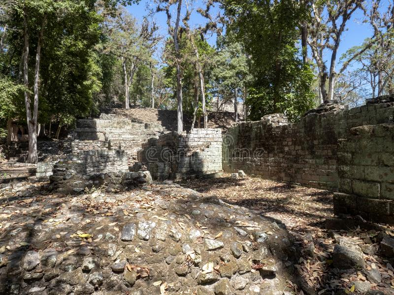 Copan archeologiczny miejsce Majska cywilizacja nie daleko od granicy z Gwatemala, Ja był kapitałem magistrala klasyczna fotografia royalty free