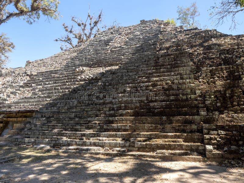 Copan archeologiczny miejsce Majska cywilizacja nie daleko od granicy z Gwatemala, Ja był kapitałem magistrala klasyczna obrazy stock