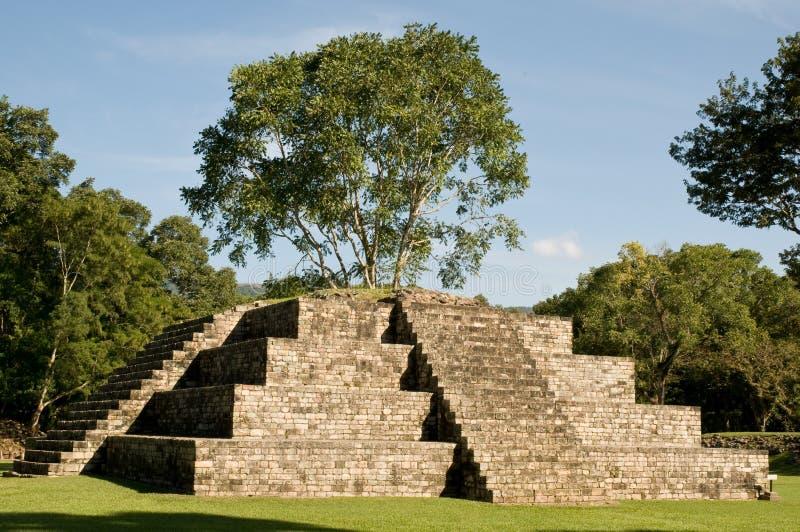 copan mayan pyramide fotografering för bildbyråer
