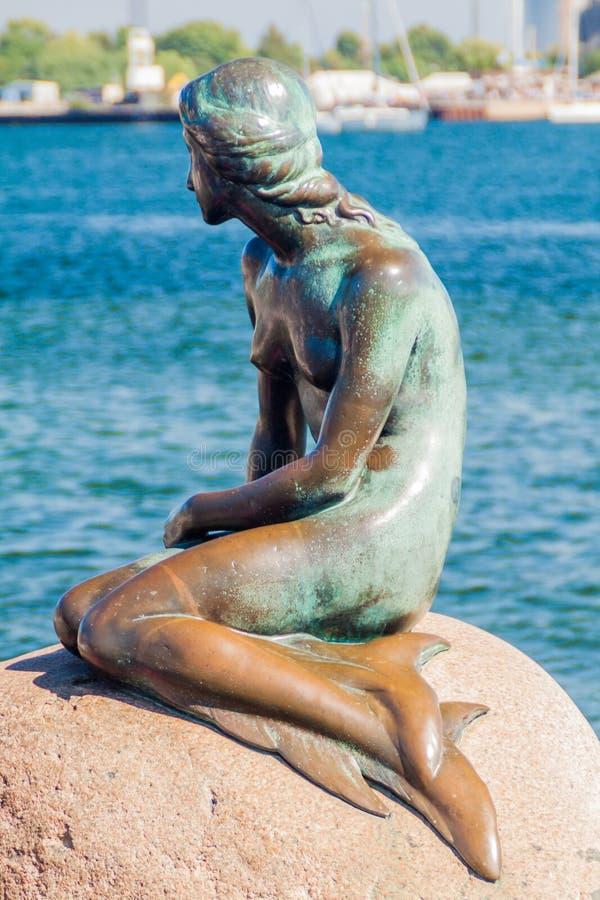 COPENHAGA, DINAMARCA - 26 DE AGOSTO DE 2016: Pouco estátua da sereia em Copenhaga, Denma fotografia de stock