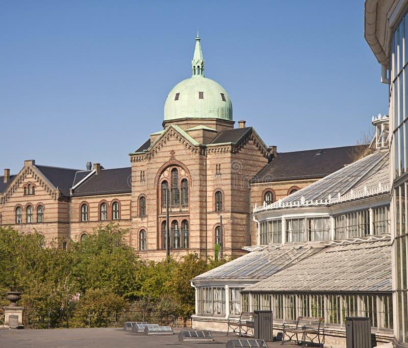 Copenhague, hospital municipal e invernaderos en el jardín botánico imagenes de archivo