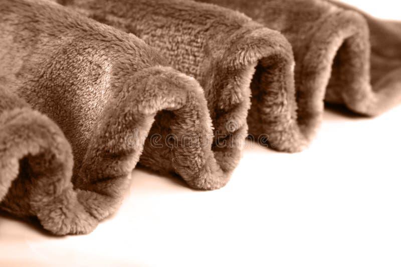 Coperta pelosa dell'animale domestico caldo di inverno immagini stock libere da diritti