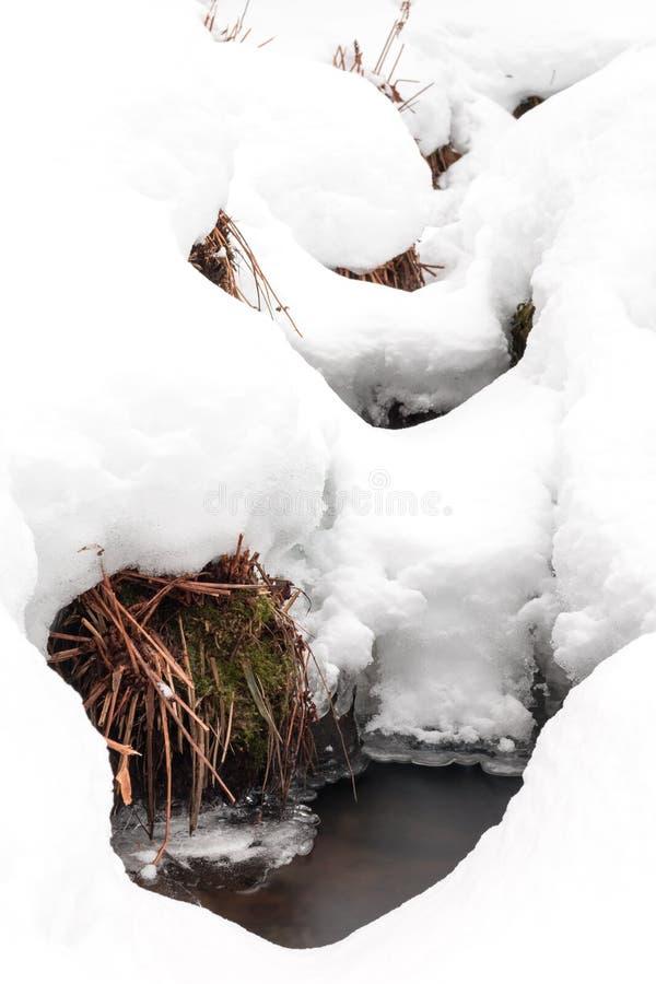 Copertura generale della neve una corrente piccola nell'inverno immagini stock