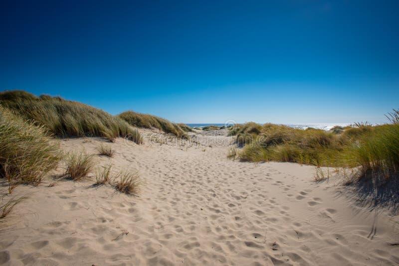 Copertura Sandy Dunes dei passi fotografia stock