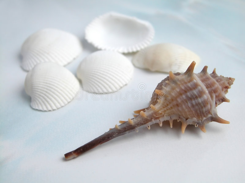 Download Coperture immagine stock. Immagine di spiaggia, accumulazione - 213741