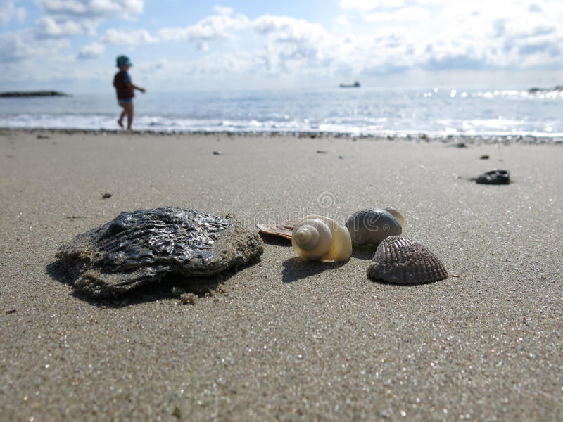 Coperture del mare sulla spiaggia sabbiosa fotografia stock libera da diritti