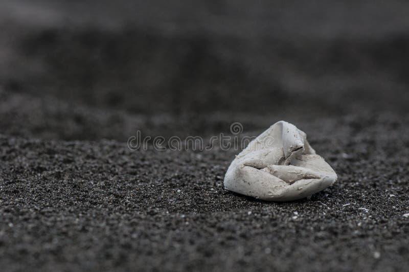 Coperture dell'uovo della tartaruga di mare immagini stock