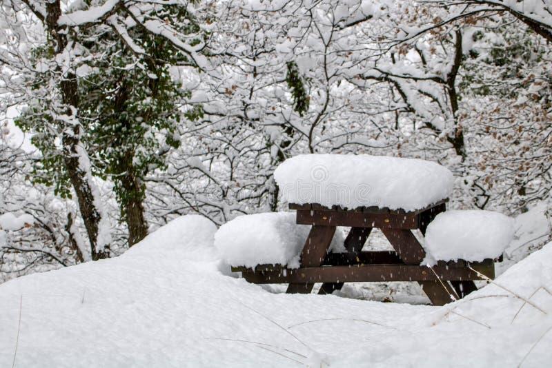 Coperture di neve tutto fotografia stock