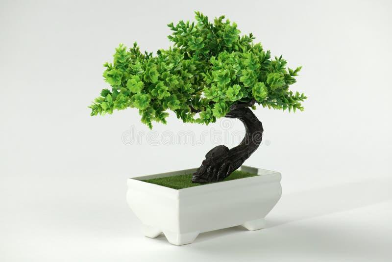 Copia artificial de un bonsai del árbol en un fondo blanco imagenes de archivo