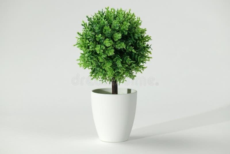 Copia artificial de un bonsai del árbol en un fondo blanco imágenes de archivo libres de regalías