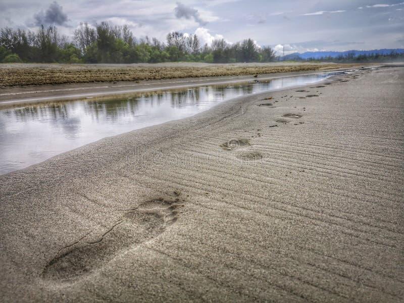 Copie aux pieds nus marchant sur le bord de mer image stock