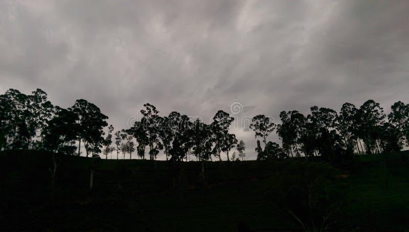 Copie du ` s de natures chez Kandapola images stock