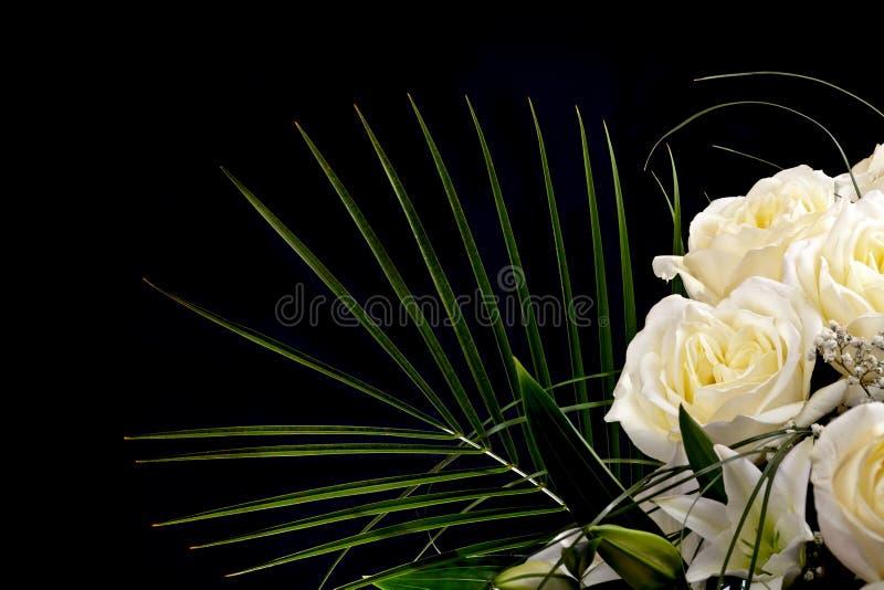 Copie el espacio con las rosas blancas en negro imágenes de archivo libres de regalías