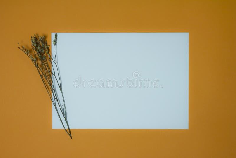 Copiez l'espace, fond, concept images libres de droits