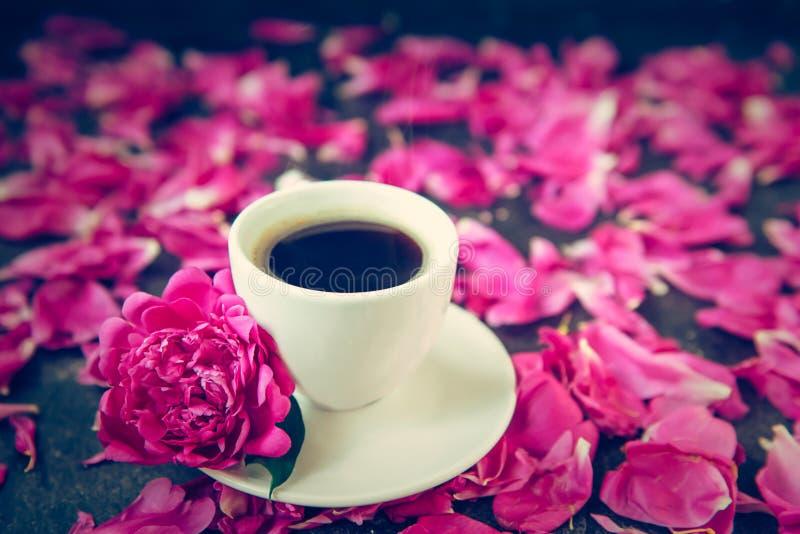 Copo ascendente próximo do café recentemente fabricado cerveja e da flor cor-de-rosa da peônia nos pires brancos no fundo preto c imagens de stock royalty free