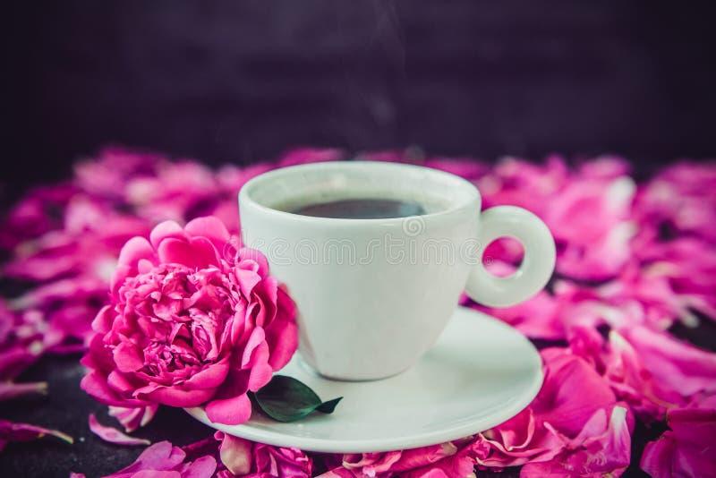 Copo ascendente próximo do café recentemente fabricado cerveja e da flor cor-de-rosa da peônia nos pires brancos no fundo preto c fotografia de stock