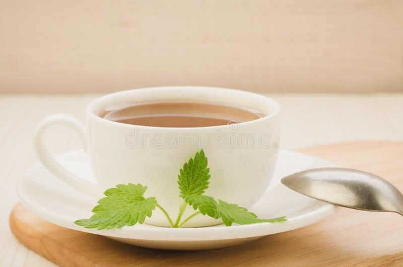 copo branco do chá e folhas da hortelã em uns pires e em uma colher/copo branco do chá e em umas folhas da hortelã em uns pires e fotos de stock