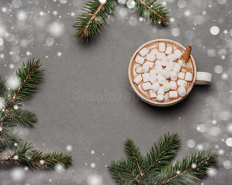 Copo com cacau, canela no fundo cinzento do Natal Refeições matinais verdes do abeto, neve Vista superior, configuração lisa imagens de stock