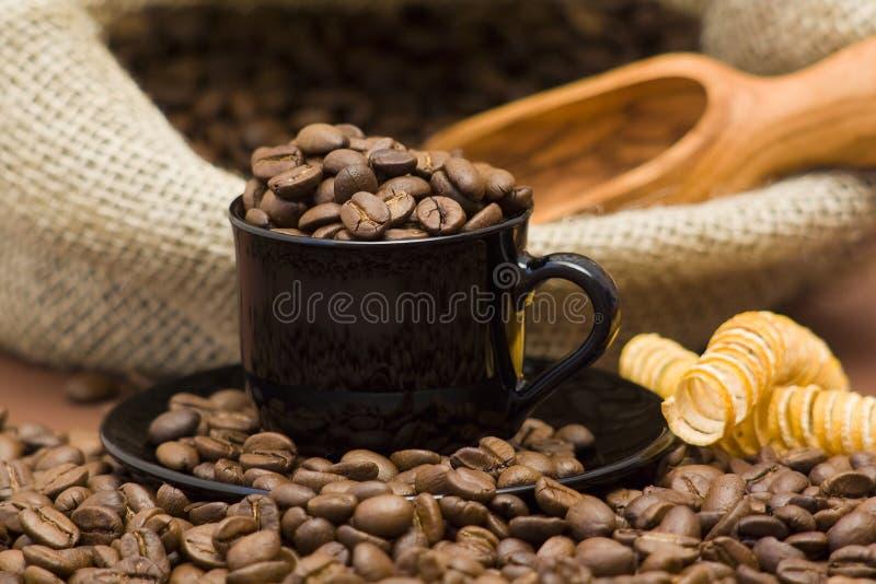 Copo completamente de feijões de café fotos de stock