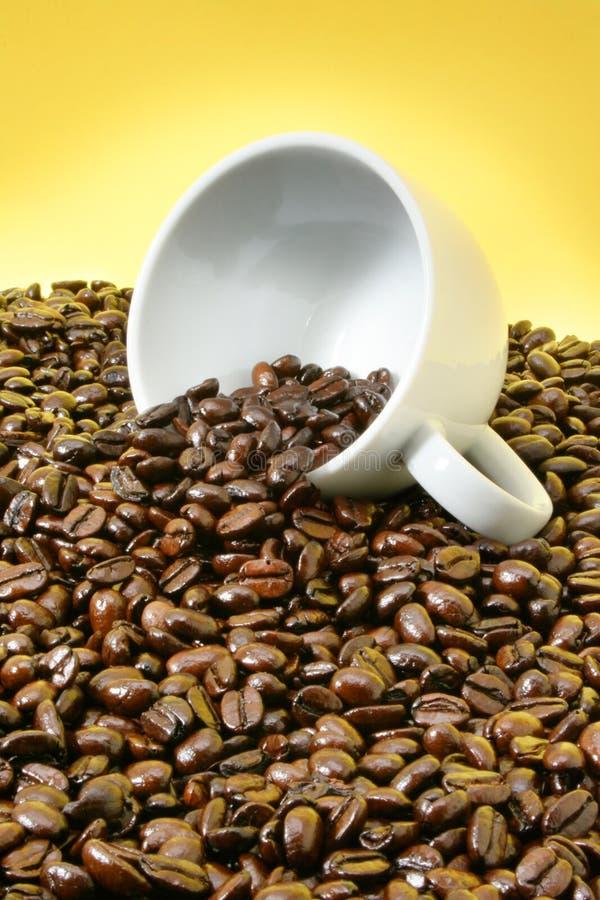 Copo de café caído imagem de stock