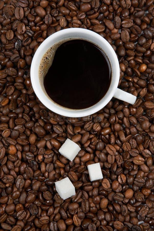Copo de café com açúcar em feijões roasted fotos de stock royalty free