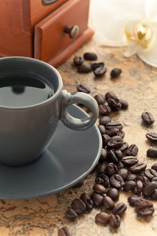 Copo de café com flor da orquídea foto de stock