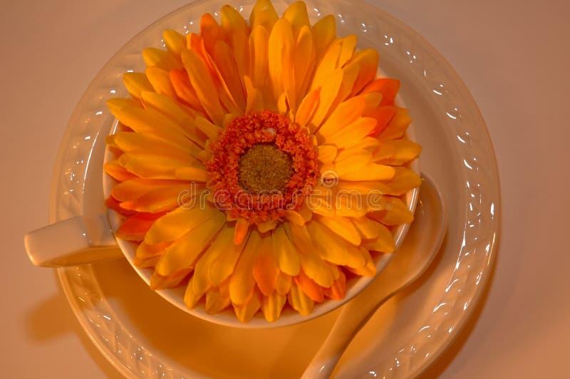 Download Copo De Café Com A Flor Dentro De 7 Imagem de Stock - Imagem de pétalas, detalhe: 104945